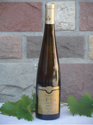 Pinot Gris Grains Nobles 50cl